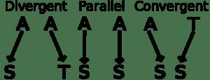 Evolutionary trends - divergent, parallel, convergent