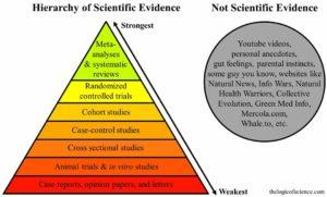Science and feelings