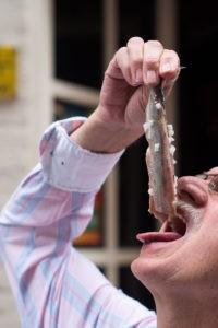 Eating a herring the Dutch way